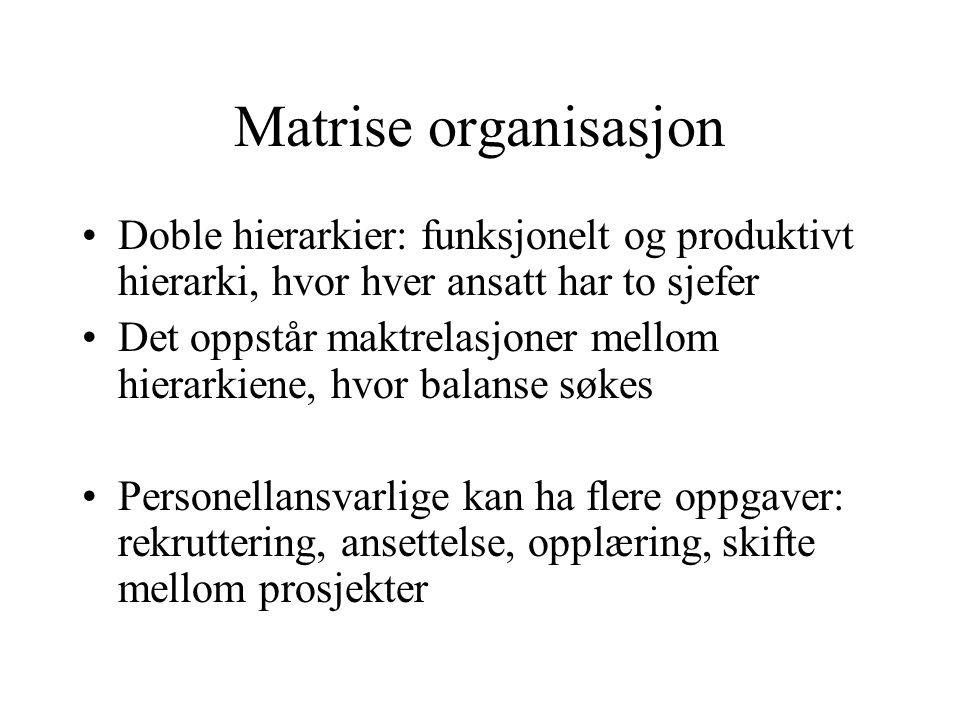 Matrise organisasjon Doble hierarkier: funksjonelt og produktivt hierarki, hvor hver ansatt har to sjefer Det oppstår maktrelasjoner mellom hierarkien