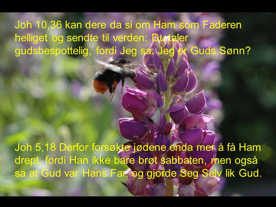 Joh 10,36 kan dere da si om Ham som Faderen helliget og sendte til verden: Du taler gudsbespottelig, fordi Jeg sa: Jeg er Guds Sønn.