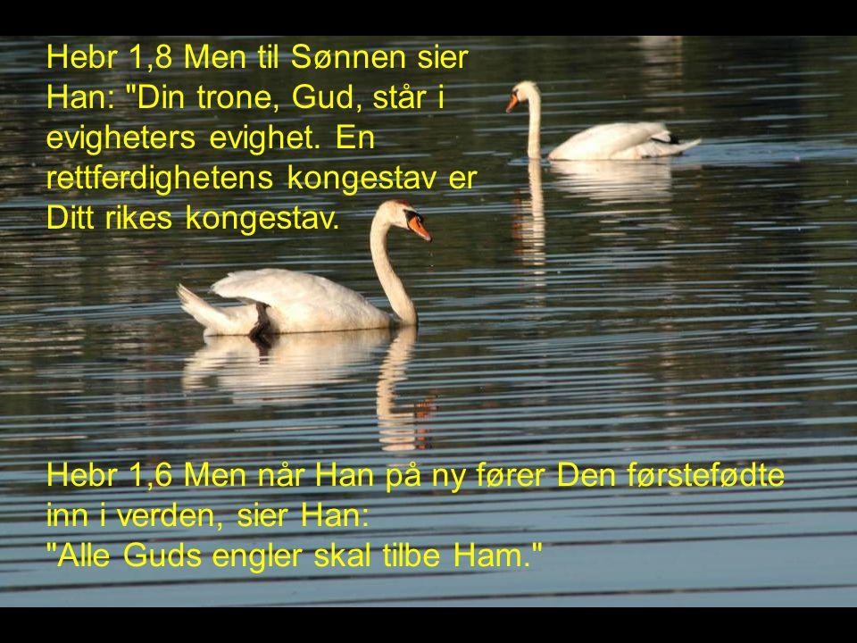 Hebr 1,8 Men til Sønnen sier Han: Din trone, Gud, står i evigheters evighet.