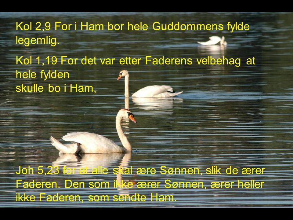 Kol 2,9 For i Ham bor hele Guddommens fylde legemlig.