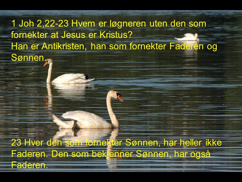 1 Joh 2,22-23 Hvem er løgneren uten den som fornekter at Jesus er Kristus.