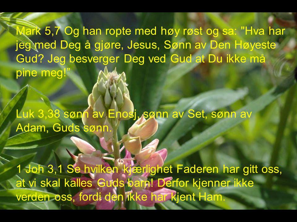 Mark 5,7 Og han ropte med høy røst og sa: Hva har jeg med Deg å gjøre, Jesus, Sønn av Den Høyeste Gud.