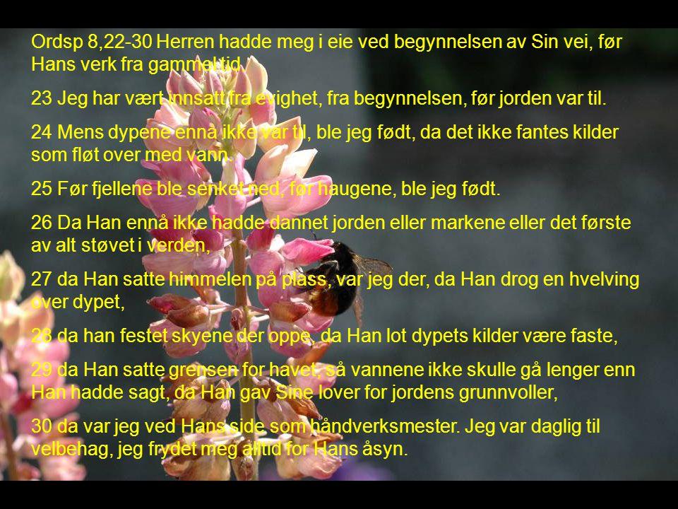 Ordsp 8,22-30 Herren hadde meg i eie ved begynnelsen av Sin vei, før Hans verk fra gammel tid.