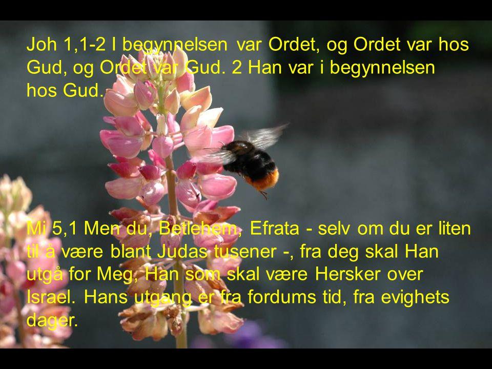 Joh 1,1-2 I begynnelsen var Ordet, og Ordet var hos Gud, og Ordet var Gud.