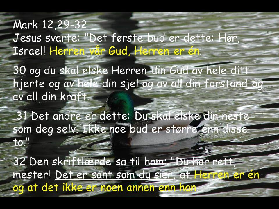 Mark 12,29-32 Jesus svarte:
