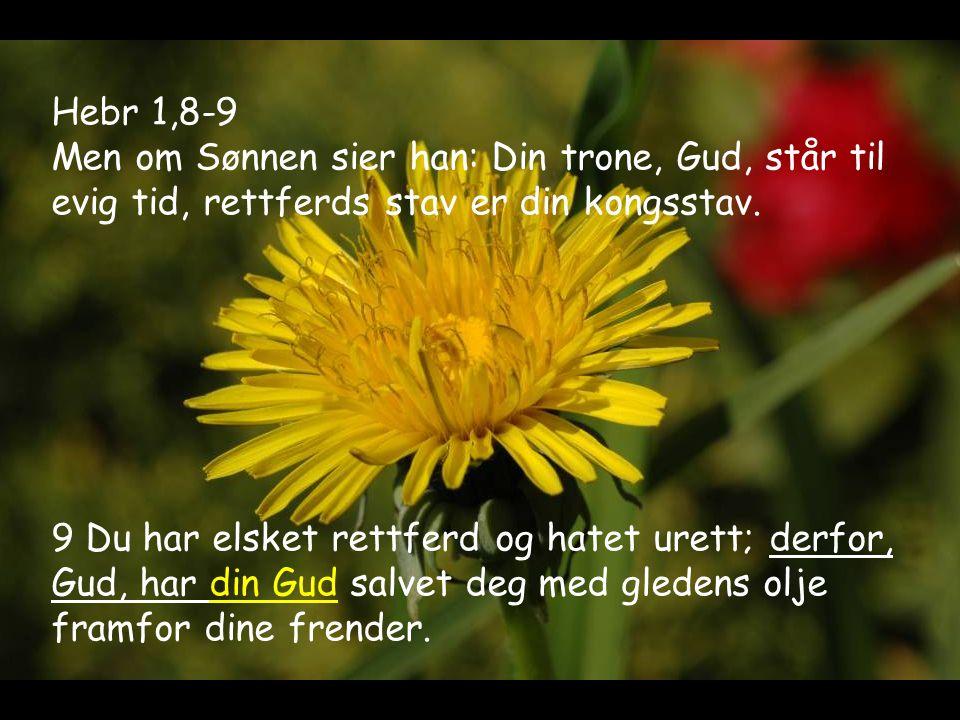 Hebr 1,8-9 Men om Sønnen sier han: Din trone, Gud, står til evig tid, rettferds stav er din kongsstav. 9 Du har elsket rettferd og hatet urett; derfor