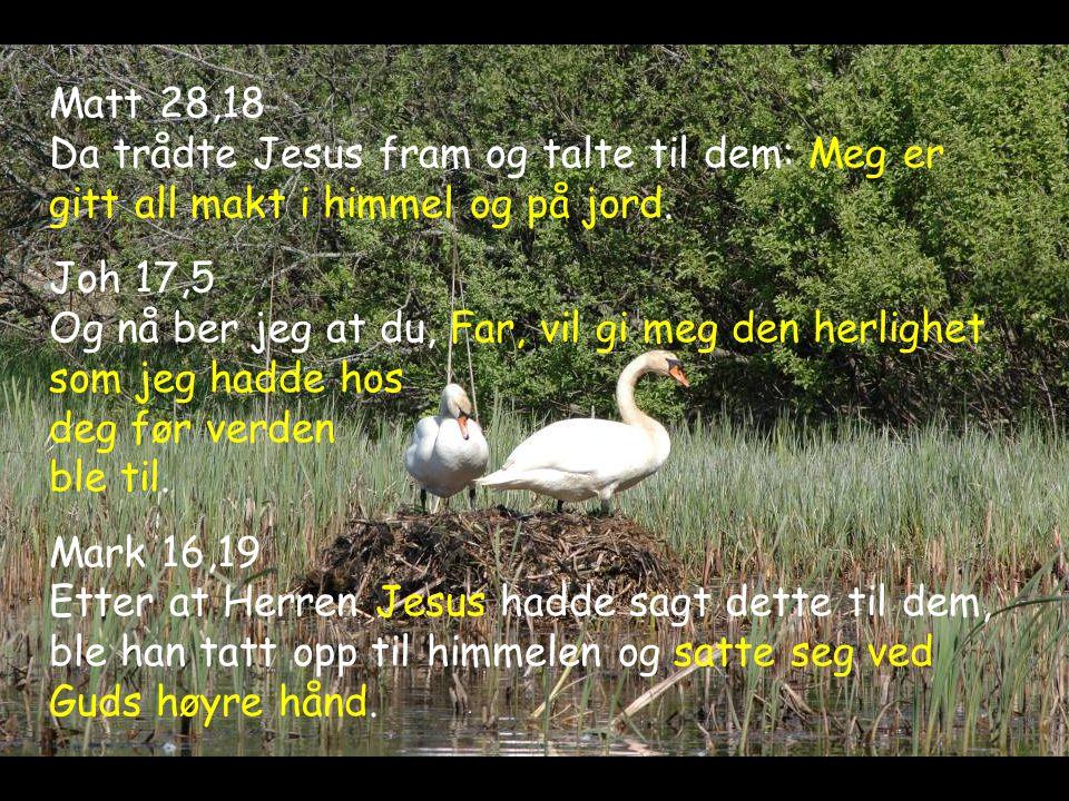 Matt 28,18 Da trådte Jesus fram og talte til dem: Meg er gitt all makt i himmel og på jord. Joh 17,5 Og nå ber jeg at du, Far, vil gi meg den herlighe