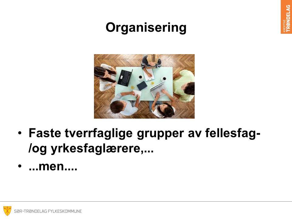 Organisering Faste tverrfaglige grupper av fellesfag- /og yrkesfaglærere,......men....