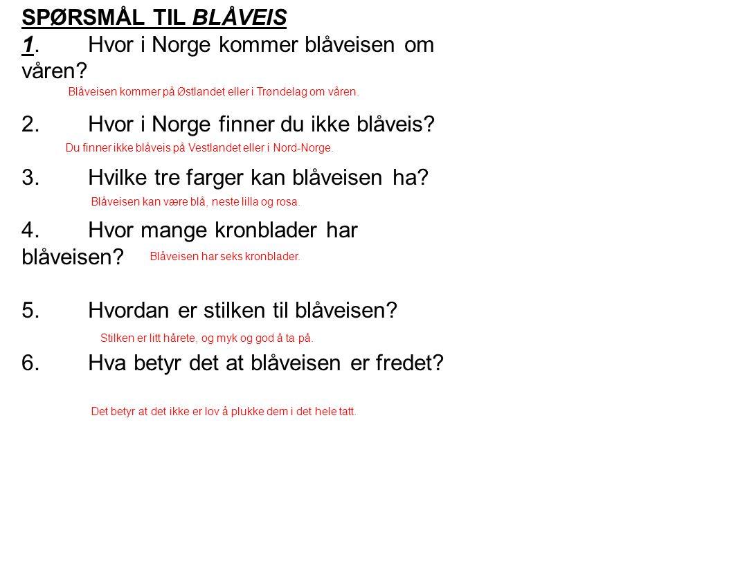SPØRSMÅL TIL BLÅVEIS 1.Hvor i Norge kommer blåveisen om våren? 2.Hvor i Norge finner du ikke blåveis? 3.Hvilke tre farger kan blåveisen ha? 4.Hvor man