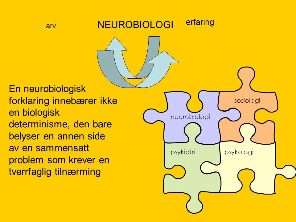 erfaring NEUROBIOLOGI neurobiologi sosiologi psykiatripsykologi En neurobiologisk forklaring innebærer ikke en biologisk determinisme, den bare belyse
