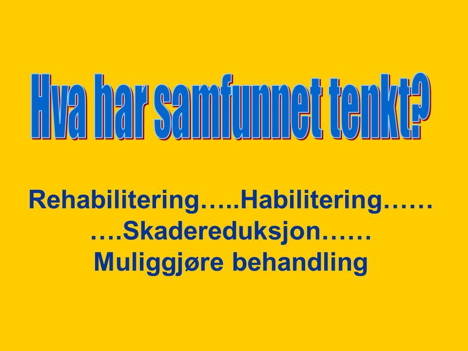 REHABILITERING LAT.: Å SETTE TILBAKE I OPPRINNELIG TILSTAND -Å GJENINSETTE I VERDIGHET – DEF.