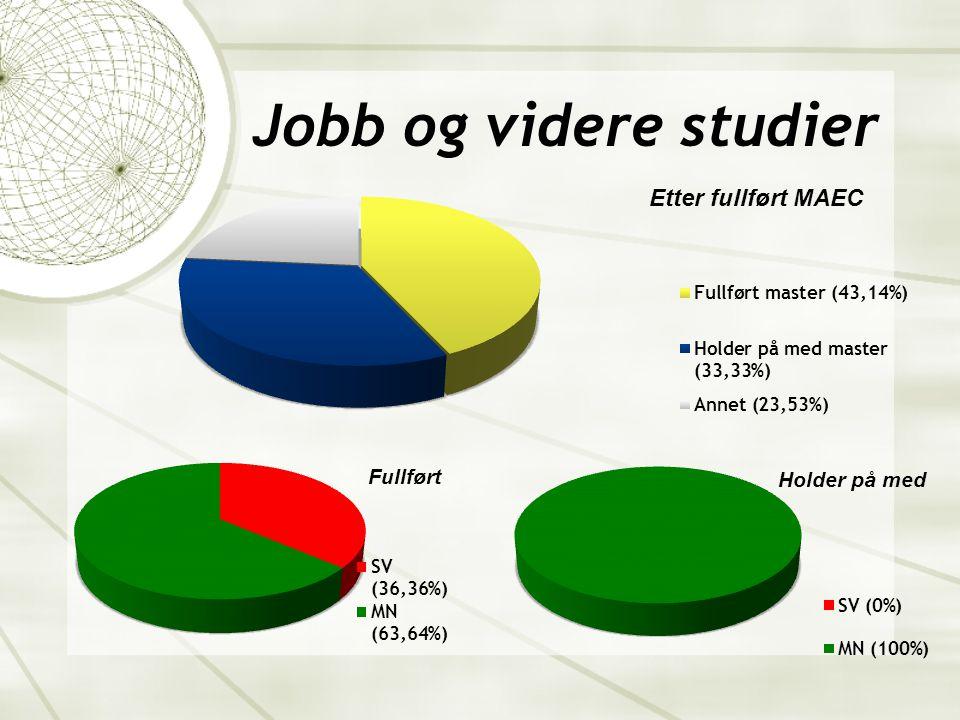 Jobb og videre studier(forts.)  Studiet gir en unik kvalifikasjon for analytisk orienterte yrker innen bl.a.