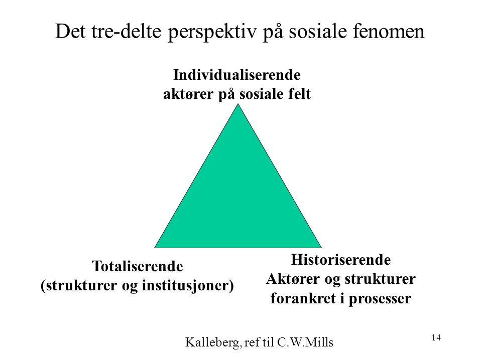 14 Det tre-delte perspektiv på sosiale fenomen Individualiserende aktører på sosiale felt Totaliserende (strukturer og institusjoner) Historiserende Aktører og strukturer forankret i prosesser Kalleberg, ref til C.W.Mills