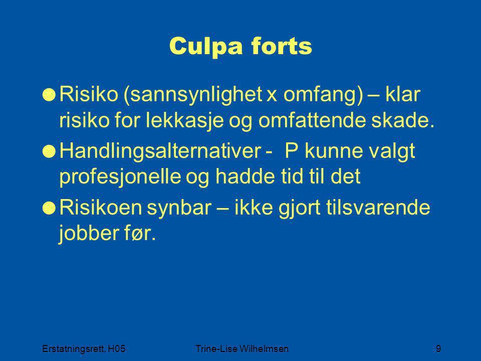 Erstatningsrett, H05Trine-Lise Wilhelmsen9 Culpa forts  Risiko (sannsynlighet x omfang) – klar risiko for lekkasje og omfattende skade.  Handlingsal