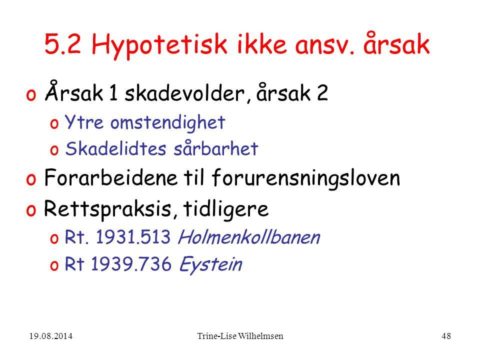 19.08.2014Trine-Lise Wilhelmsen48 5.2 Hypotetisk ikke ansv.