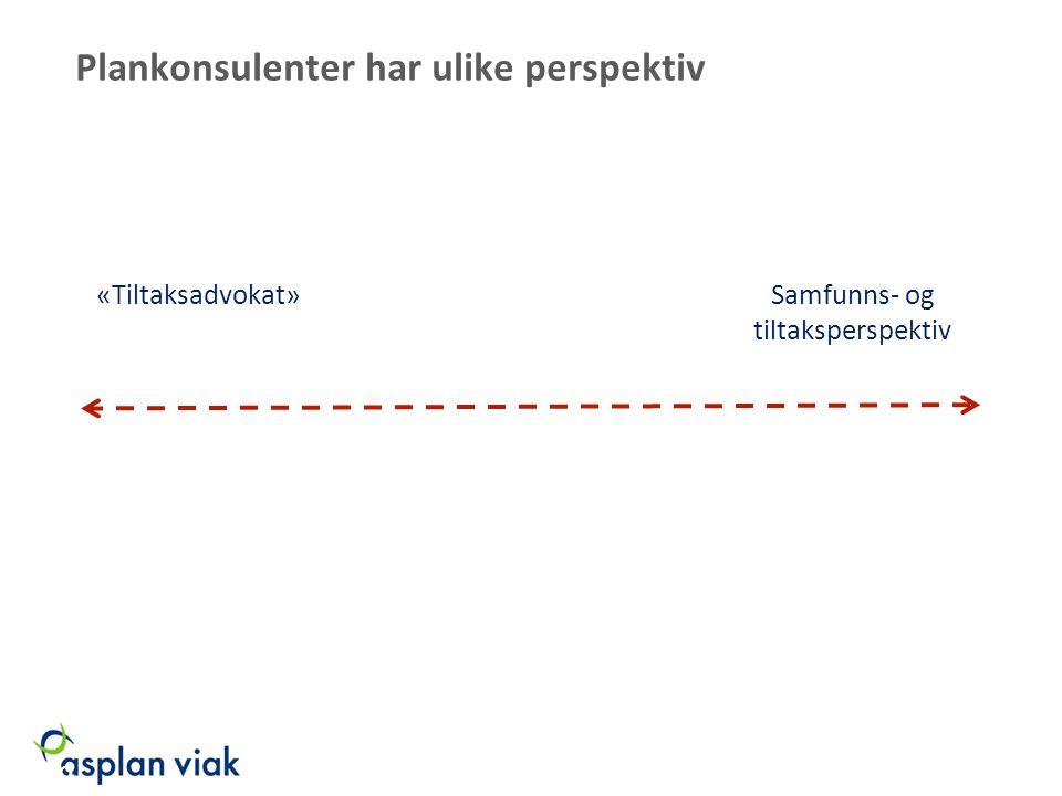 Plankonsulenter har ulike perspektiv Samfunns- og tiltaksperspektiv «Tiltaksadvokat» 19 03.02.09/EP