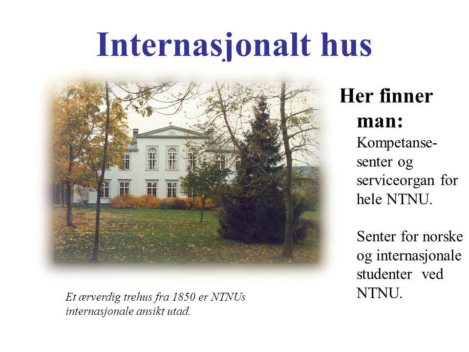 Internasjonalt hus Her finner man: Kompetanse- senter og serviceorgan for hele NTNU. Senter for norske og internasjonale studenter ved NTNU. Et ærverd