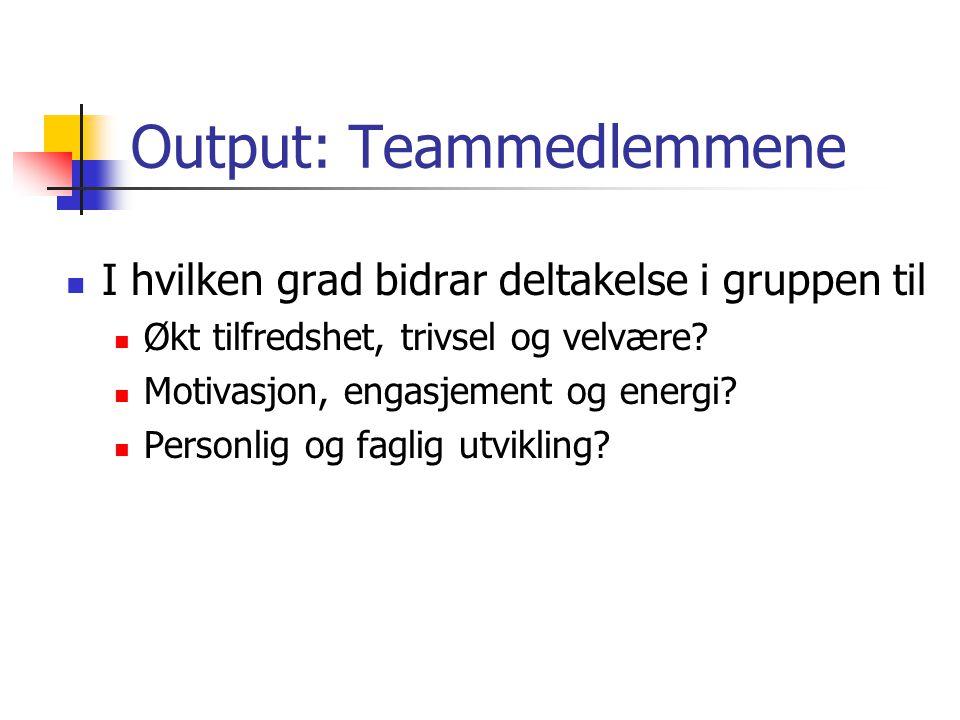 Output: Teammedlemmene I hvilken grad bidrar deltakelse i gruppen til Økt tilfredshet, trivsel og velvære? Motivasjon, engasjement og energi? Personli