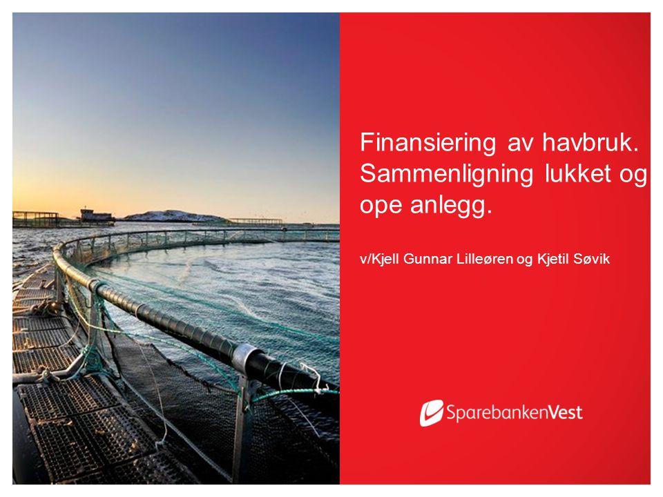 Finansiering av havbruk. Sammenligning lukket og ope anlegg.