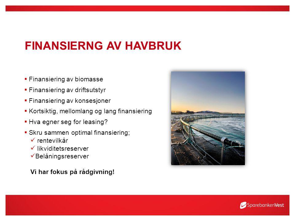 FINANSIERNG AV HAVBRUK  Finansiering av biomasse  Finansiering av driftsutstyr  Finansiering av konsesjoner  Kortsiktig, mellomlang og lang finansiering  Hva egner seg for leasing.