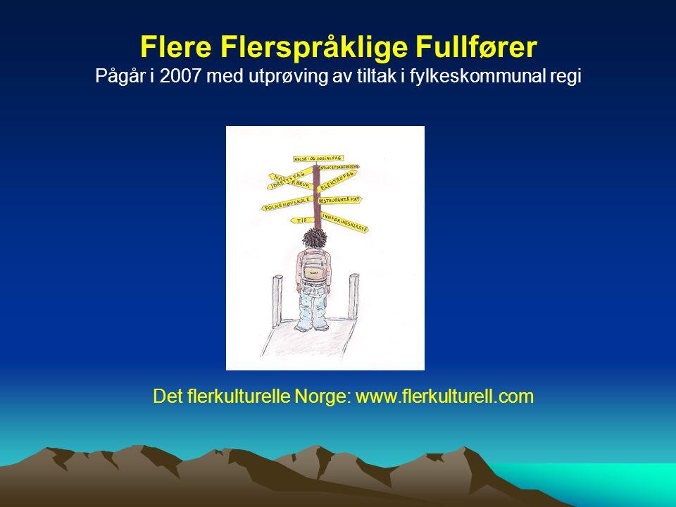 Flere Flerspråklige Fullfører Pågår i 2007 med utprøving av tiltak i fylkeskommunal regi Det flerkulturelle Norge: www.flerkulturell.com