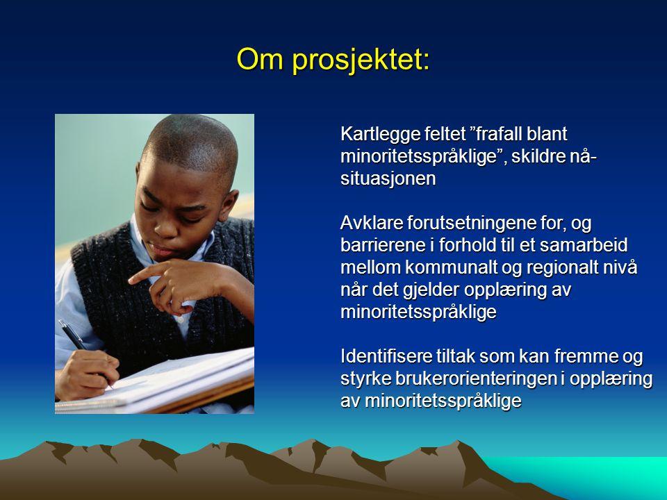 """Om prosjektet: Kartlegge feltet """"frafall blant minoritetsspråklige"""", skildre nå- situasjonen Avklare forutsetningene for, og barrierene i forhold til"""