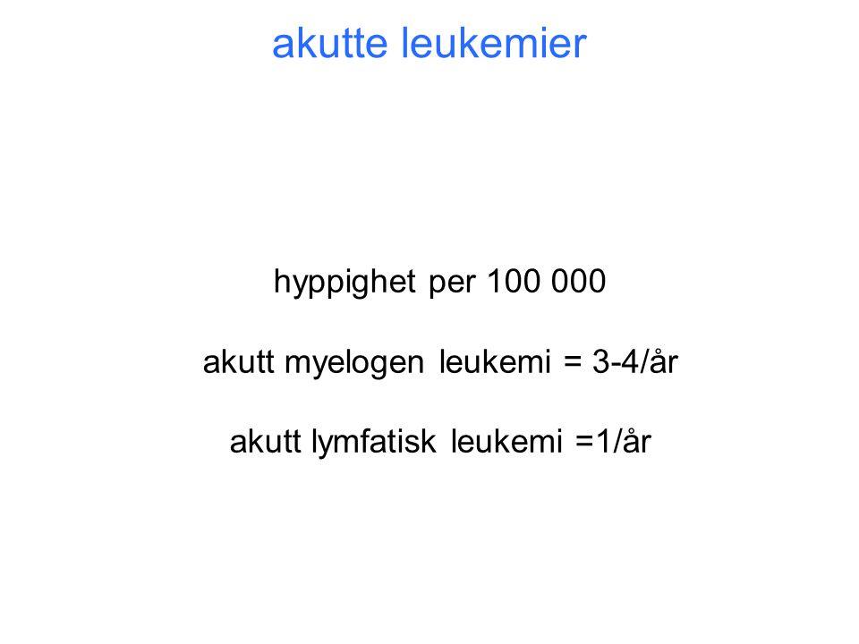 hyppighet per 100 000 akutt myelogen leukemi = 3-4/år akutt lymfatisk leukemi =1/år akutte leukemier