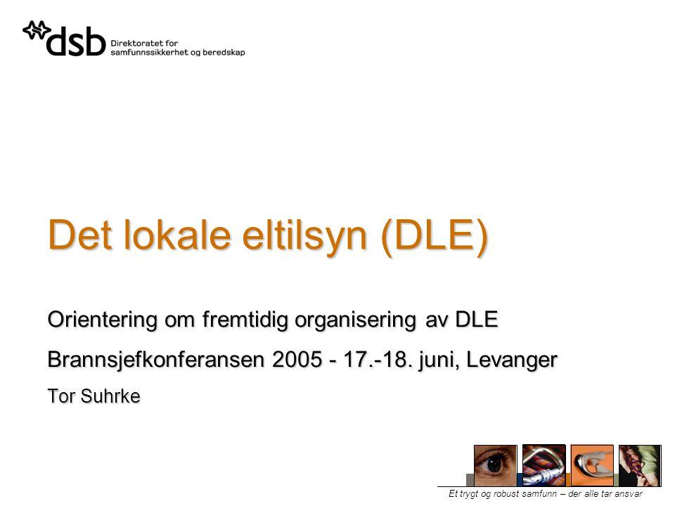 Et trygt og robust samfunn – der alle tar ansvar Det lokale eltilsyn (DLE) Orientering om fremtidig organisering av DLE Brannsjefkonferansen 2005 - 17.-18.