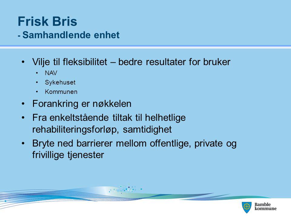 Frisk Bris - Samhandlende enhet Vilje til fleksibilitet – bedre resultater for bruker NAV Sykehuset Kommunen Forankring er nøkkelen Fra enkeltstående