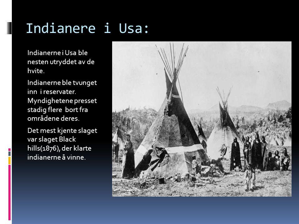 Indianere i Usa: Indianerne i Usa ble nesten utryddet av de hvite. Indianerne ble tvunget inn i reservater. Myndighetene presset stadig flere bort fra
