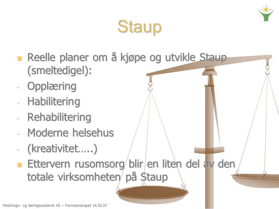 Mestrings– og læringssenteret AS – Formannskapet 14.02.07 Staup Reelle planer om å kjøpe og utvikle Staup (smeltedigel): Reelle planer om å kjøpe og u