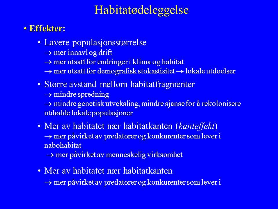 Habitatødeleggelse Effekter: Lavere populasjonsstørrelse  mer innavl og drift  mer utsatt for endringer i klima og habitat  mer utsatt for demograf
