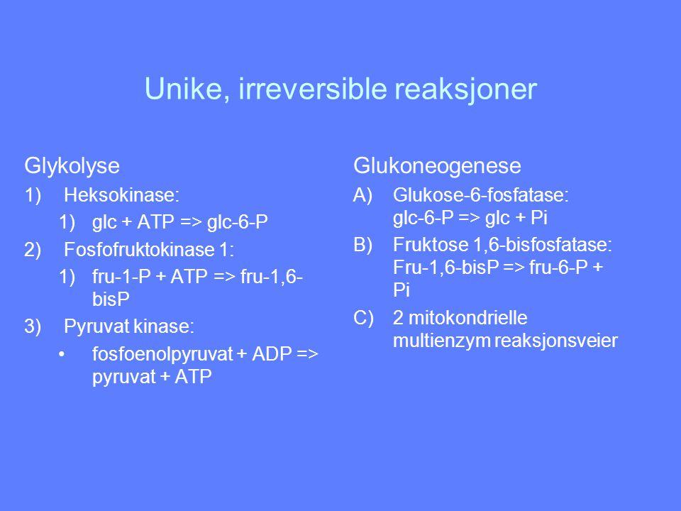 Unike, irreversible reaksjoner Glykolyse 1)Heksokinase: 1)glc + ATP => glc-6-P 2)Fosfofruktokinase 1: 1)fru-1-P + ATP => fru-1,6- bisP 3)Pyruvat kinas