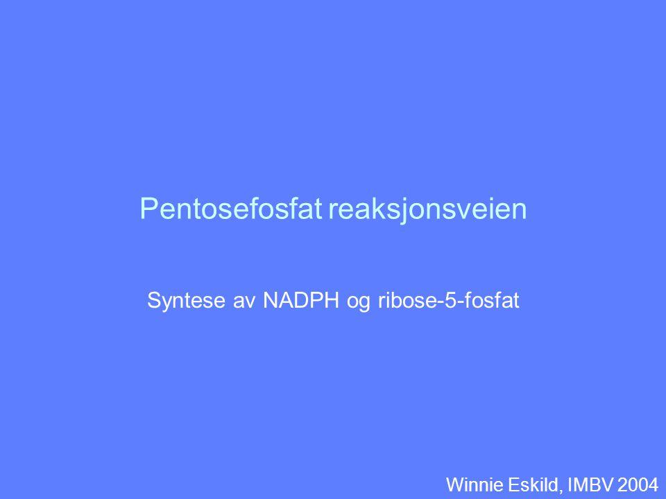 Pentosefosfat reaksjonsveien Syntese av NADPH og ribose-5-fosfat Winnie Eskild, IMBV 2004