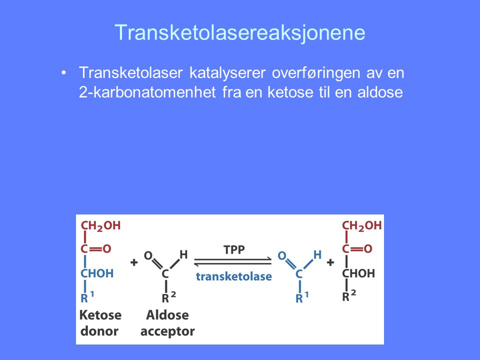 Transketolasereaksjonene Transketolaser katalyserer overføringen av en 2-karbonatomenhet fra en ketose til en aldose