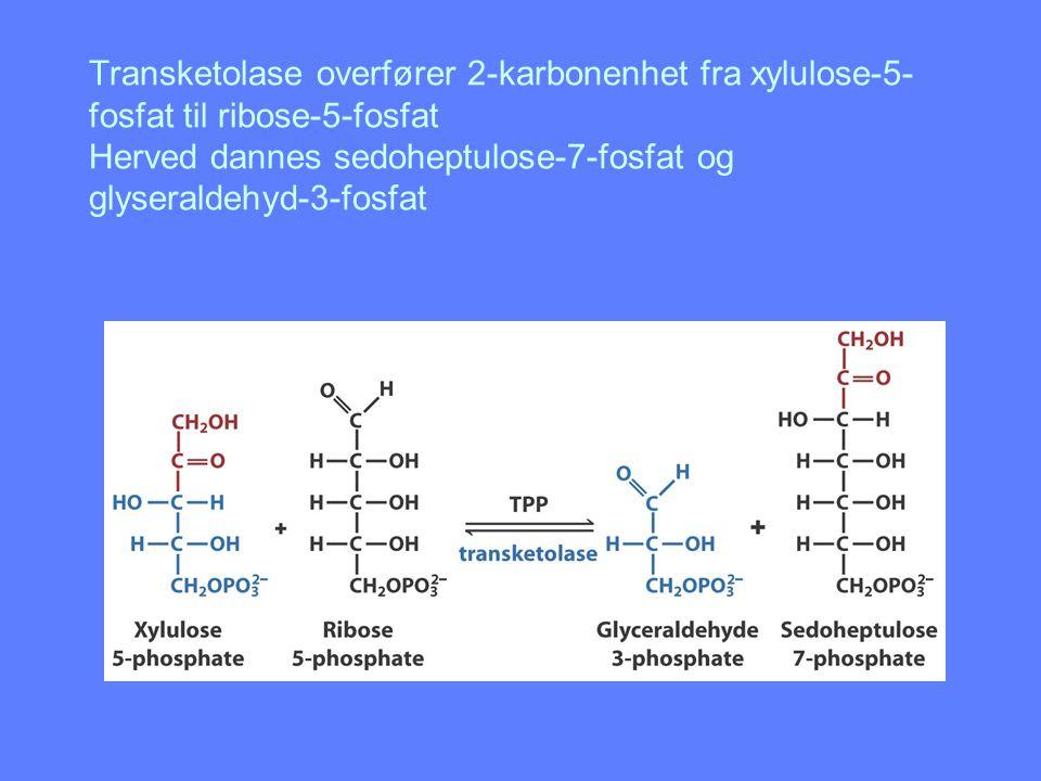 Transketolase overfører 2-karbonenhet fra xylulose-5- fosfat til ribose-5-fosfat Herved dannes sedoheptulose-7-fosfat og glyseraldehyd-3-fosfat