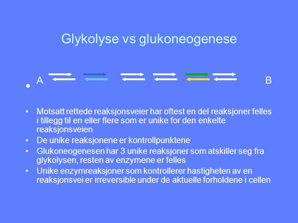 Glykolyse vs glukoneogenese A B Motsatt rettede reaksjonsveier har oftest en del reaksjoner felles i tillegg til en eller flere som er unike for den e