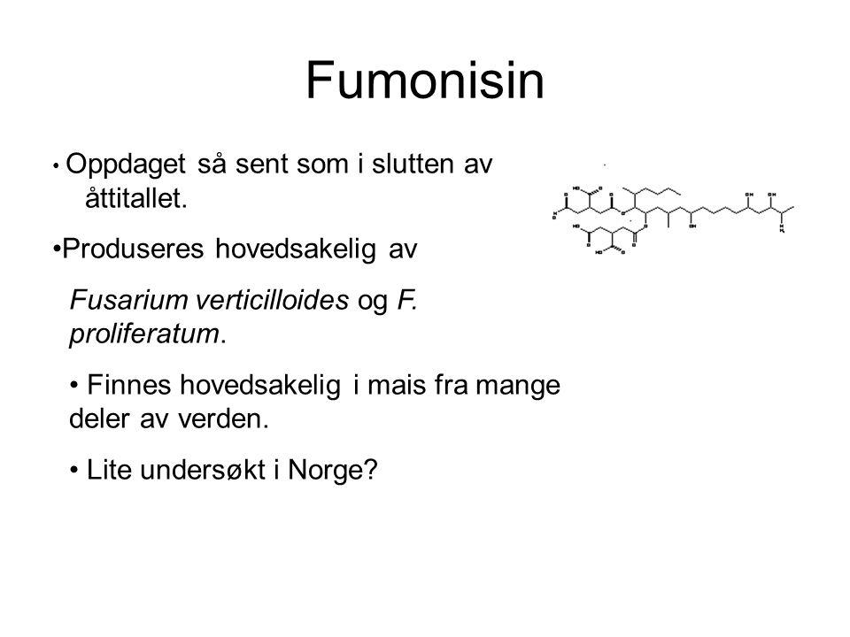 Fumonisin Oppdaget så sent som i slutten av åttitallet. Produseres hovedsakelig av Fusarium verticilloides og F. proliferatum. Finnes hovedsakelig i m
