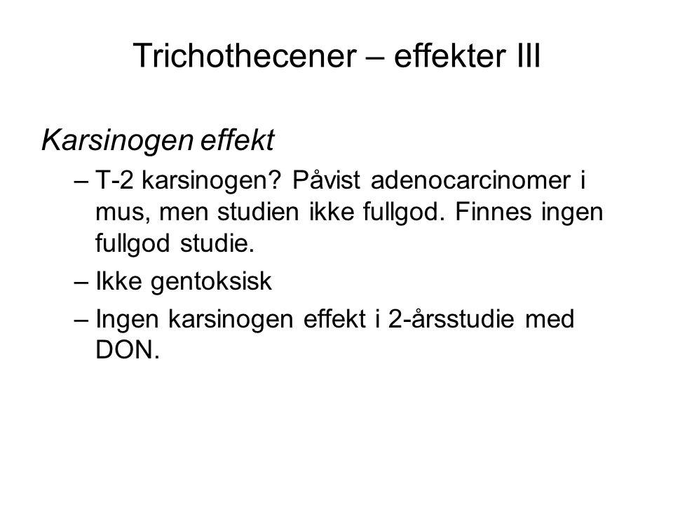 Trichothecener – effekter III Karsinogen effekt –T-2 karsinogen? Påvist adenocarcinomer i mus, men studien ikke fullgod. Finnes ingen fullgod studie.