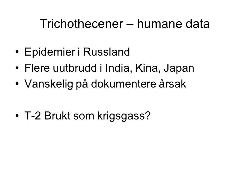 Trichothecener – humane data Epidemier i Russland Flere uutbrudd i India, Kina, Japan Vanskelig på dokumentere årsak T-2 Brukt som krigsgass?