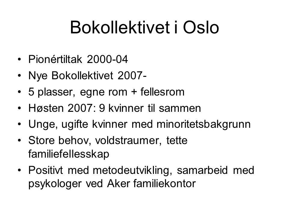Bokollektivet i Oslo Pionértiltak 2000-04 Nye Bokollektivet 2007- 5 plasser, egne rom + fellesrom Høsten 2007: 9 kvinner til sammen Unge, ugifte kvinner med minoritetsbakgrunn Store behov, voldstraumer, tette familiefellesskap Positivt med metodeutvikling, samarbeid med psykologer ved Aker familiekontor