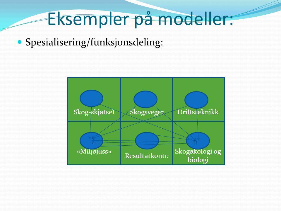 Eksempler på modeller: Spesialisering/funksjonsdeling: Skog-skjøtselSkogsveger Resultatkontr.