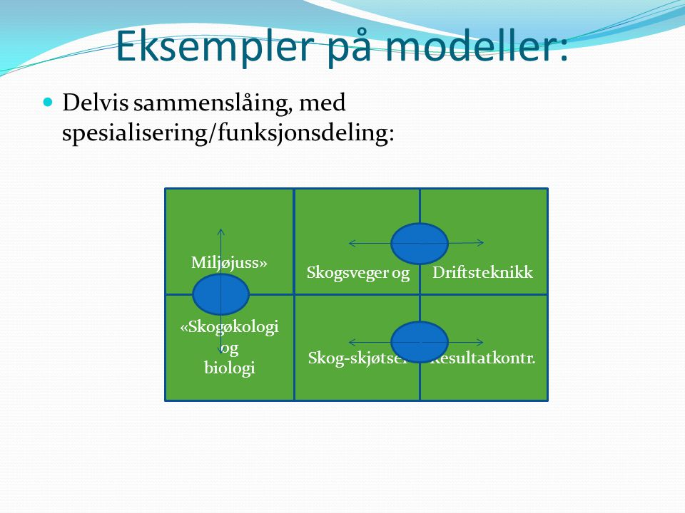 Eksempler på modeller: Delvis sammenslåing, med spesialisering/funksjonsdeling: Miljøjuss» Skogsveger og Skog-skjøtselResultatkontr.