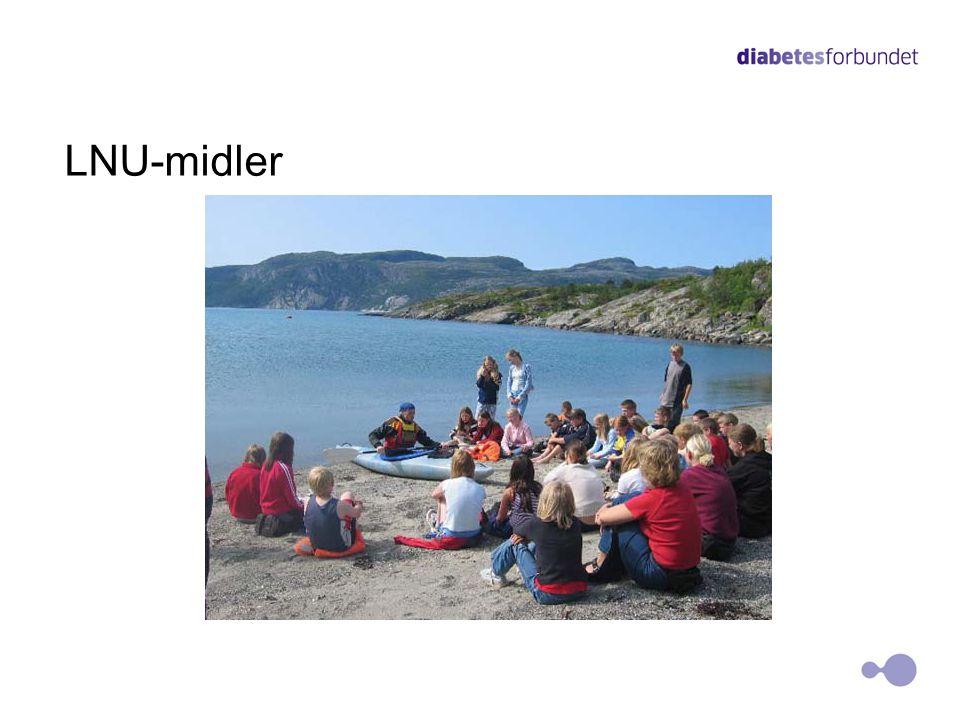 LNU-midler 20