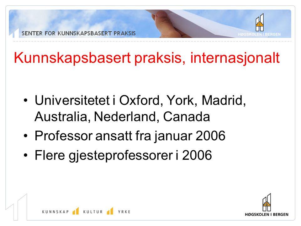 Kunnskapsbasert praksis, internasjonalt Universitetet i Oxford, York, Madrid, Australia, Nederland, Canada Professor ansatt fra januar 2006 Flere gjes