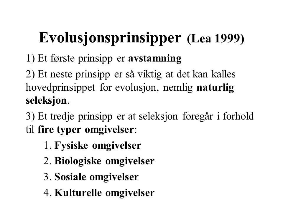 Evolusjonsprinsipper (Lea 1999) 1) Et første prinsipp er avstamning 2) Et neste prinsipp er så viktig at det kan kalles hovedprinsippet for evolusjon,