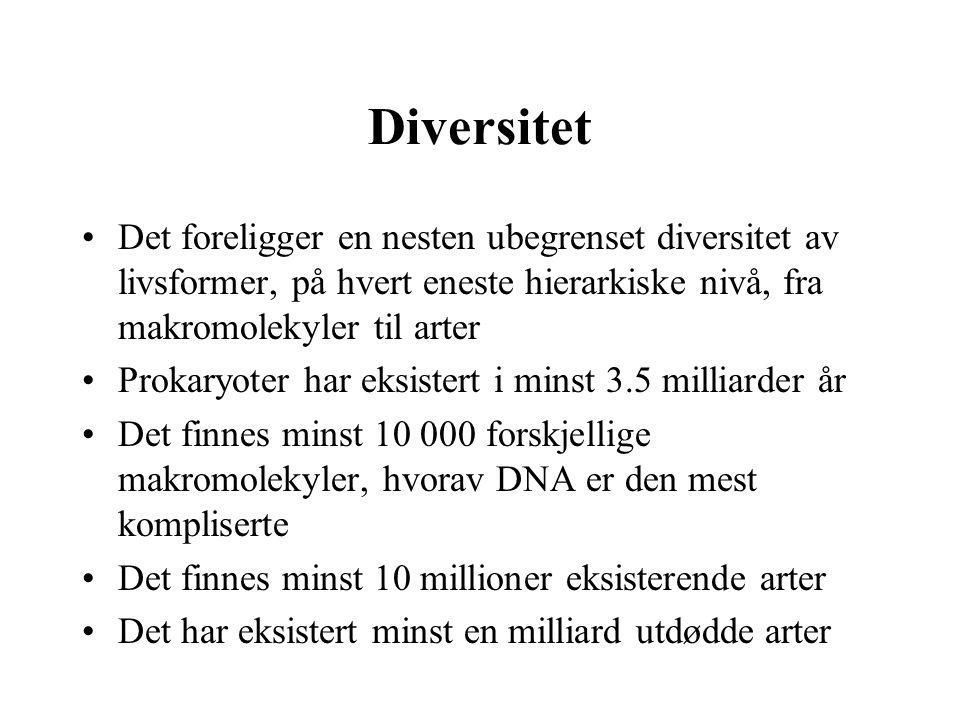 Diversitet Det foreligger en nesten ubegrenset diversitet av livsformer, på hvert eneste hierarkiske nivå, fra makromolekyler til arter Prokaryoter ha