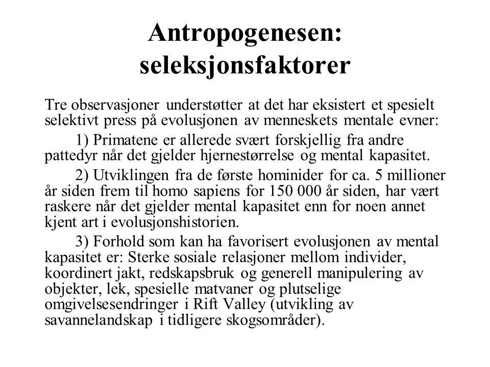 Antropogenesen: seleksjonsfaktorer Tre observasjoner understøtter at det har eksistert et spesielt selektivt press på evolusjonen av menneskets mental