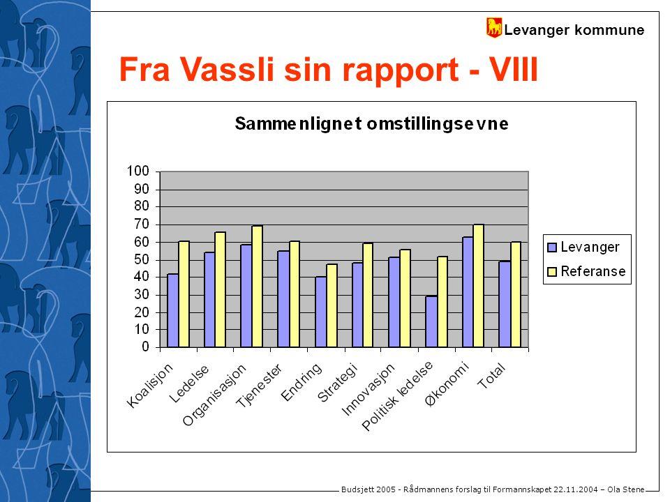 Levanger kommune Budsjett 2005 - Rådmannens forslag til Formannskapet 22.11.2004 – Ola Stene Fra Vassli sin rapport - VIII