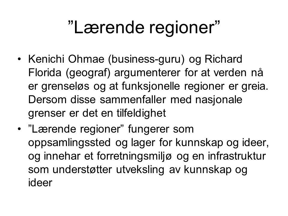 """""""Lærende regioner"""" Kenichi Ohmae (business-guru) og Richard Florida (geograf) argumenterer for at verden nå er grenseløs og at funksjonelle regioner e"""